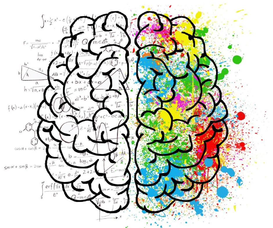 Rozvoj mozku = rozvoj obou hemisfér