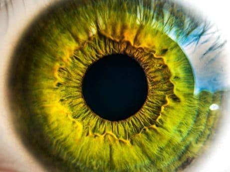 rozkapání očí